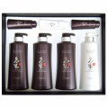 Doori Daeng Gi Meo Ri Ki Gold Premium Special Hair Care 4pcs Set